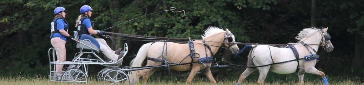 Scottish Carriage Driving Association